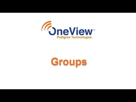 Groups in OneView