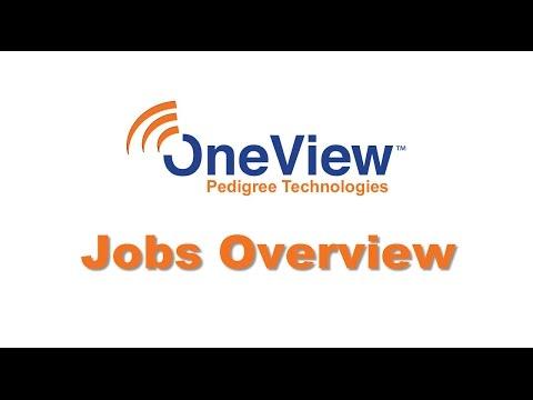 Jobs Overview