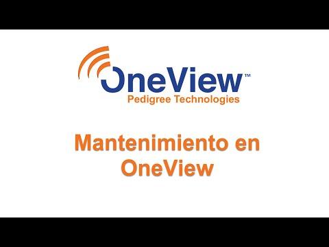 Mantenimiento en OneView