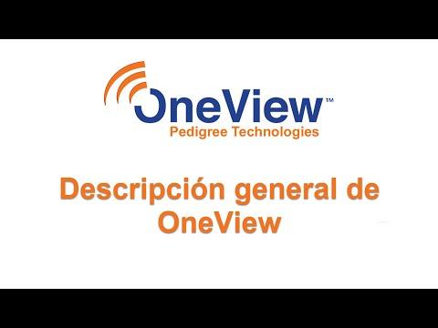 Descripción general de OneView (OneView Overview)