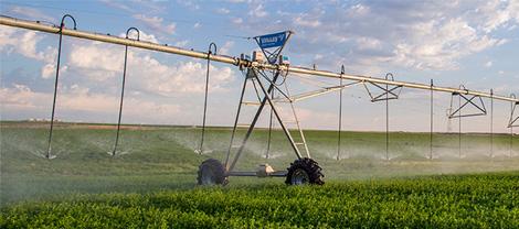 Minnesota Valley Irrigation
